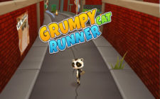 grump cat runner